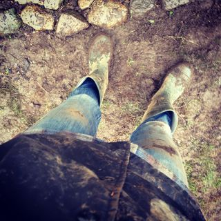 homesteading mud